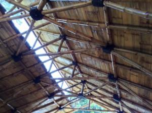 Nepal future bamboo